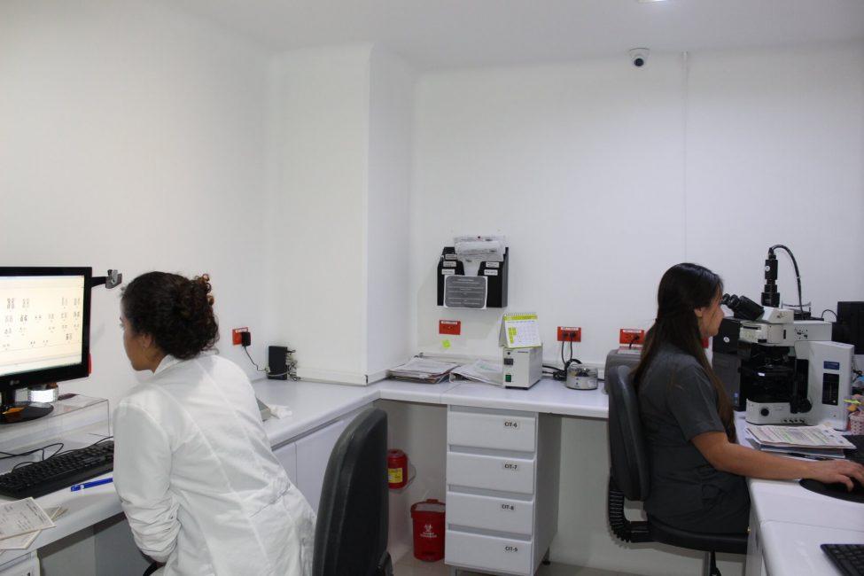 IMG_3129 citogenetica